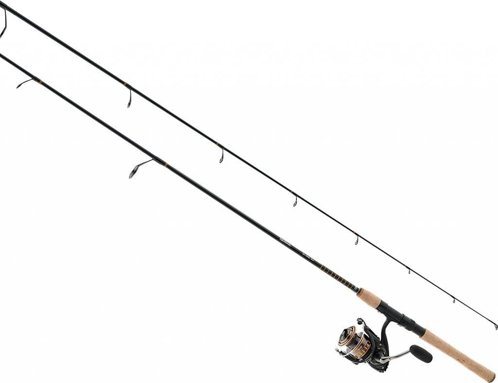 Daiwa BG2500 Saltwater Rod and Reel Fishing Combo