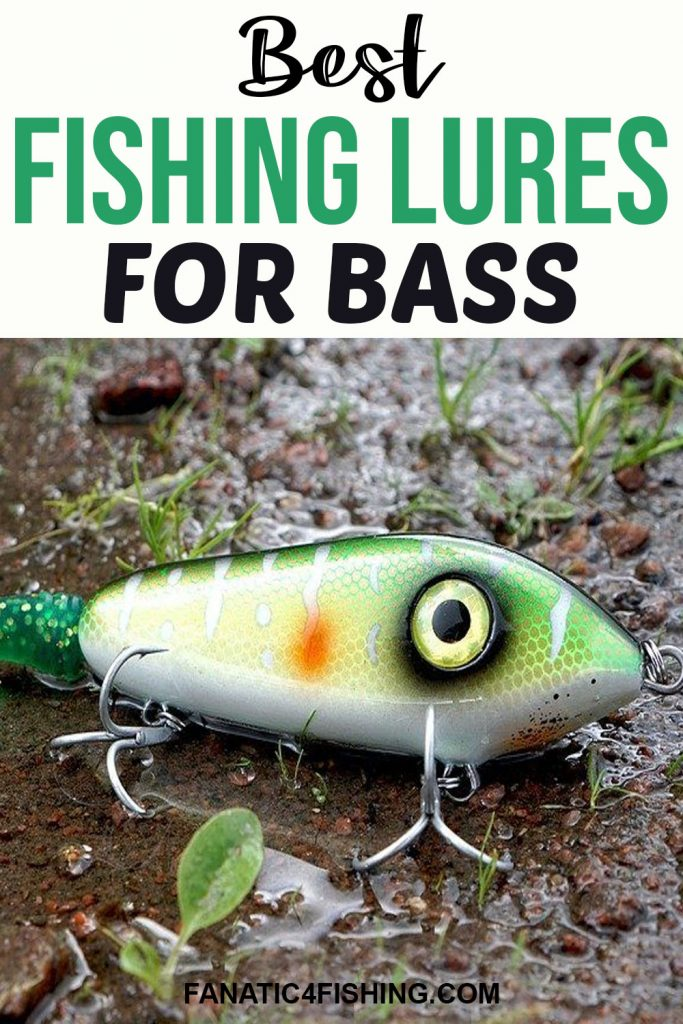 Best Fishing Lures for Bass