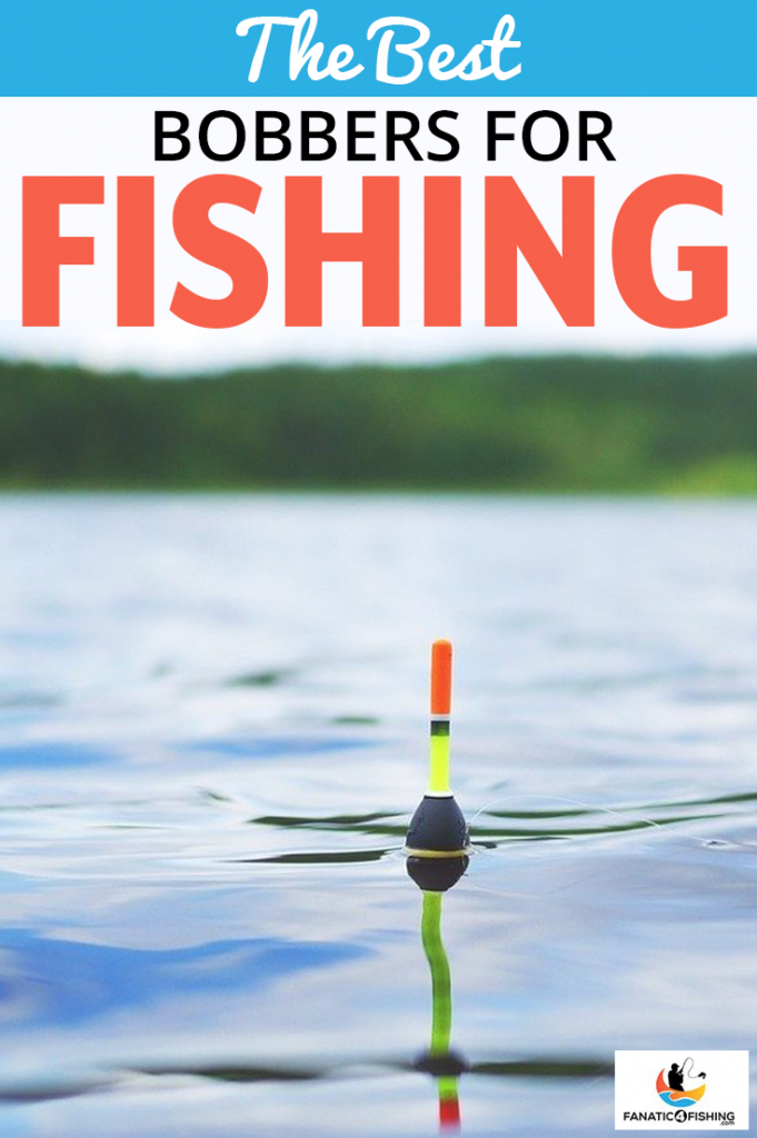 cover image of The Best Bobbers For Fishing