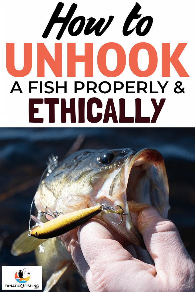 How-to-Unhook-a-Fish-Properly-&-Ethically