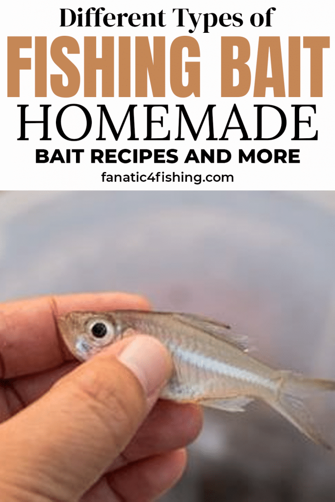 Different Types of Fishing Bait – Homemade Bait Recipes and More