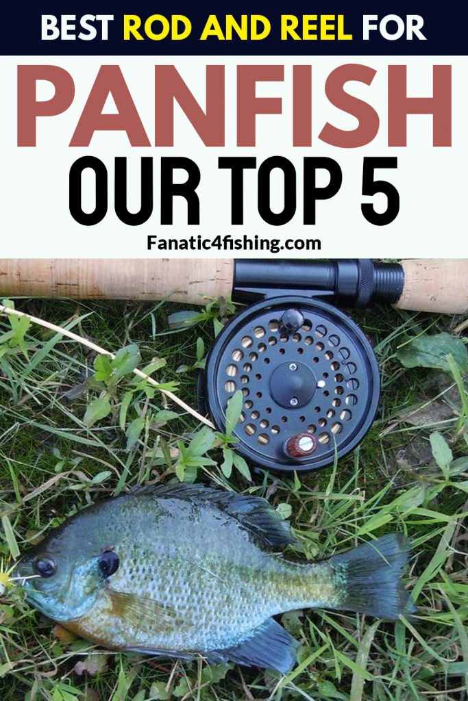 Best Rod And Reel For Panfish