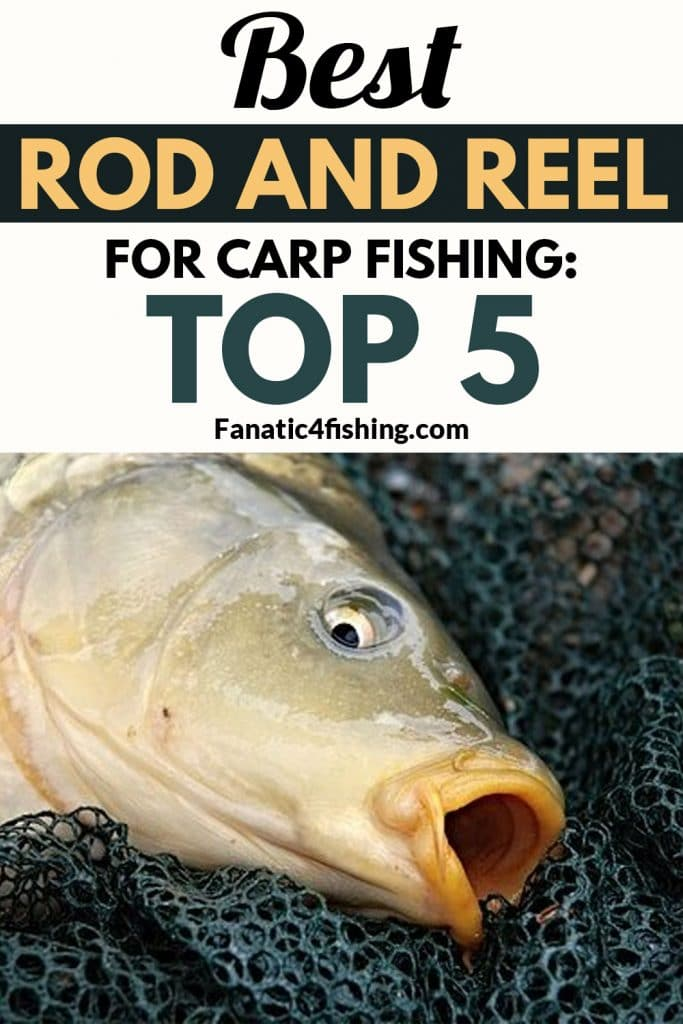 Best Rod and Reel for Carp Fishing