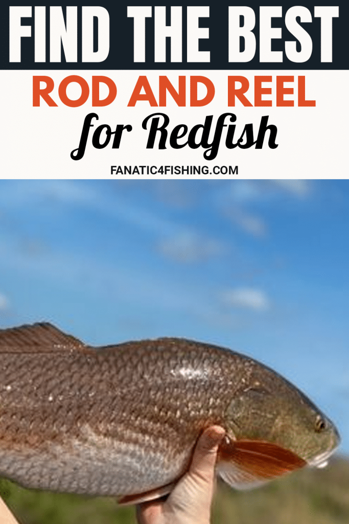 Find the Best Rod and Reel for Redfish